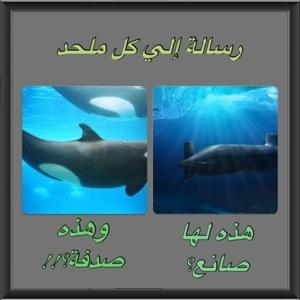 ٢٠١٢١١٠١-١٣٠٤٠٥.jpg